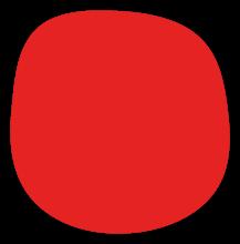 forme-orga-7.png